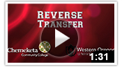 Reverse Transfer