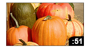 Food Pantry Pumpkin Sale